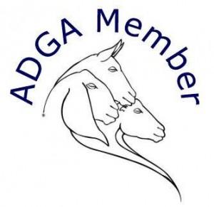 LogoForMembers